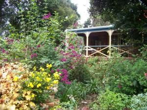 "Colourful Spring Flowering, ""The Shambles"" North facing back verandah"