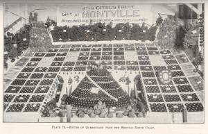 Montville Fruit Display, Brisbane RNA show 1927 Queensland Agricultural Journal