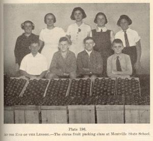 Montville School Fruit Packing Class. Queensland Agricultural Journal 1939